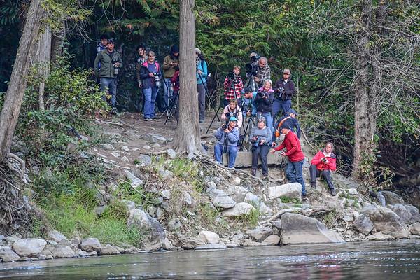 9-16-17 Bella Coola - The Human Wall