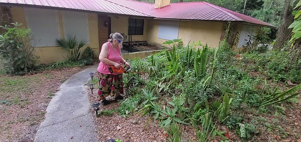 Renee Hedge Trimming Front