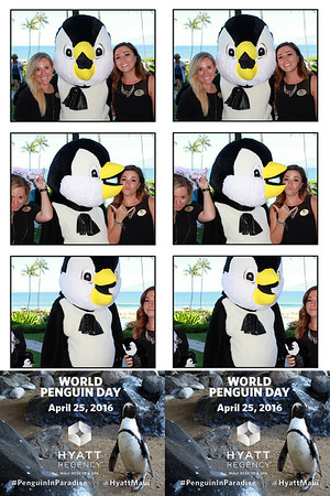 World Penguin Day @HyattMaui