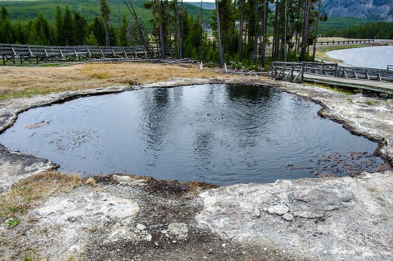 20130511-12 Yellowstone 071.jpg