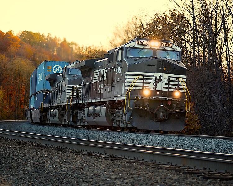 NS #9950