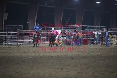 Sun Steer Wrestling