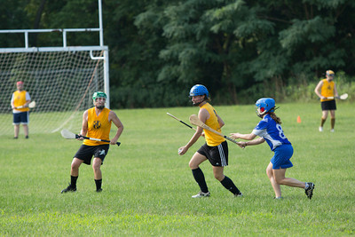 Camogie & Gaelic Football -- July 28, 2012