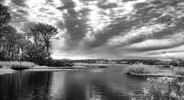 Miller Lake IR