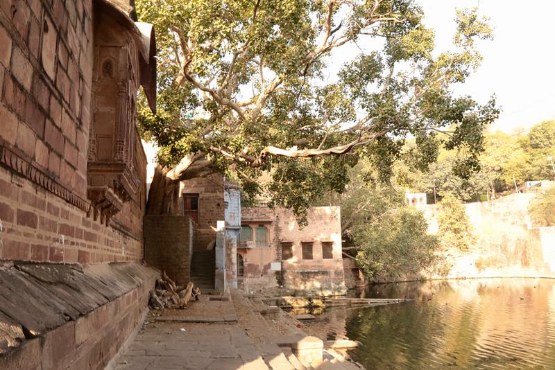 INDIA - 709.jpg