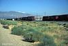 Mojave, California 1998