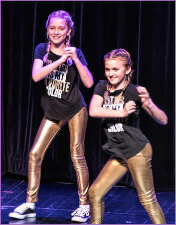 2018 Parkview Elementary Variety Show