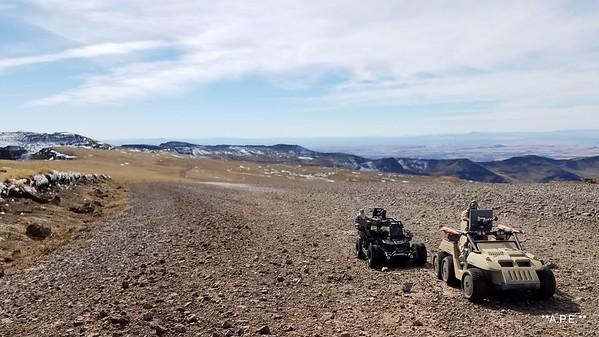 """DESERT FOX 6X6 STEENS MT. SCENE """"2"""""""