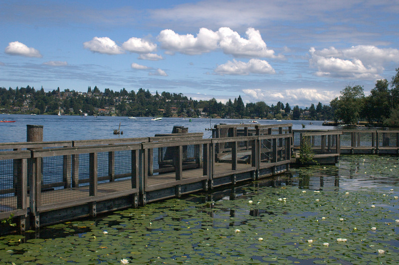 Seattle: Hiking Trail near the University