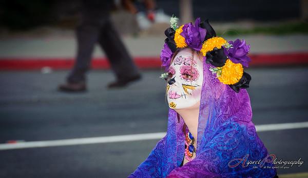 Día de los Muertos (All souls procession), Tucson