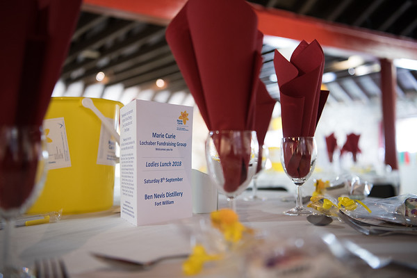 Marie Curie Ladies lunch 2018
