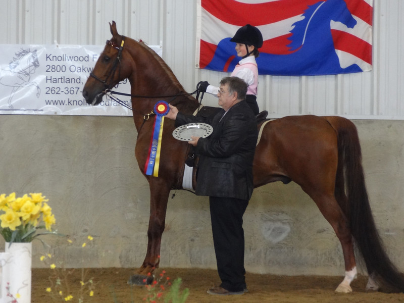 Ashley and Chipango receiving their Equitation Grand Champion award for ages 10 and under.