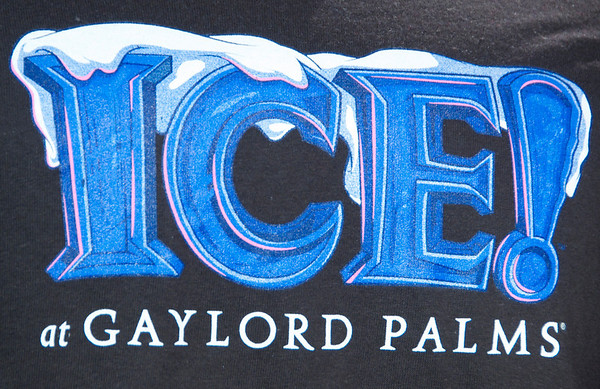"""Ice"" at Gaylord Palms 12-15-10"