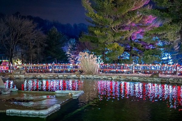 Lehigh Valley Zoo Lights Spectacular, 2019
