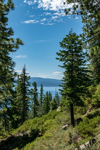 Lake Tahoe (11 of 164).jpg