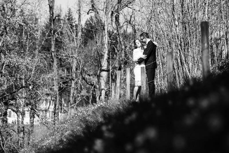 Hochzeit-Fraenzi-und-Oli-2017-114.jpg