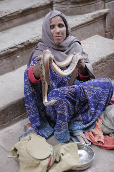 Blind woman offering a snake to the Ganga river ceremony, Benares, Varanasi, India