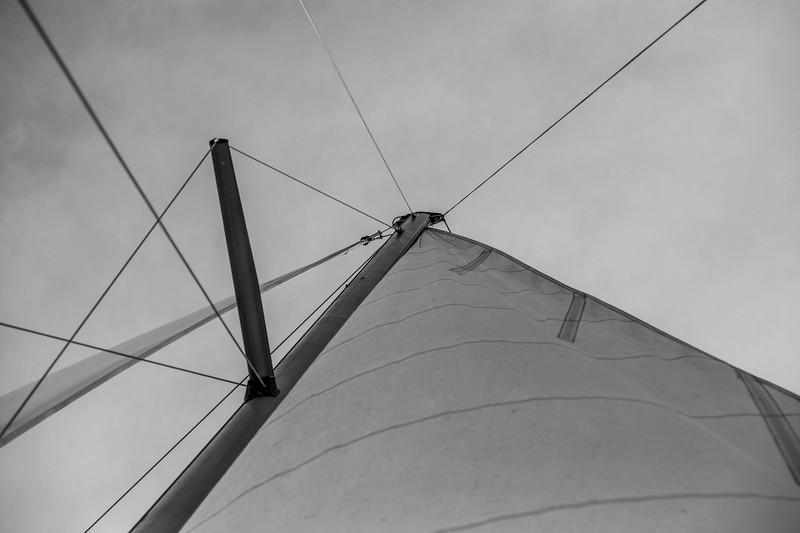 PTCruisers-Catamaran-1767.jpg