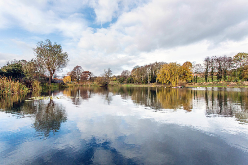 Lliswerry Pond & Park -4.jpg