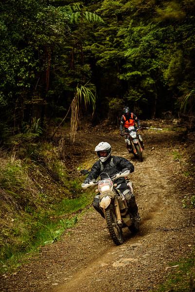 2019 KTM New Zealand Adventure Rallye (1310).jpg