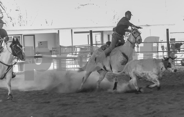 Team Roping 28FEB16