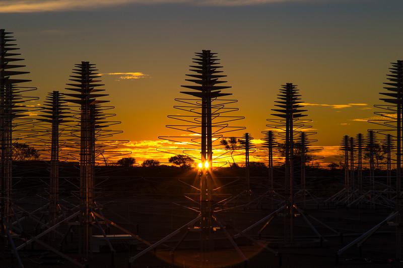 AAVS1.5 Antennas