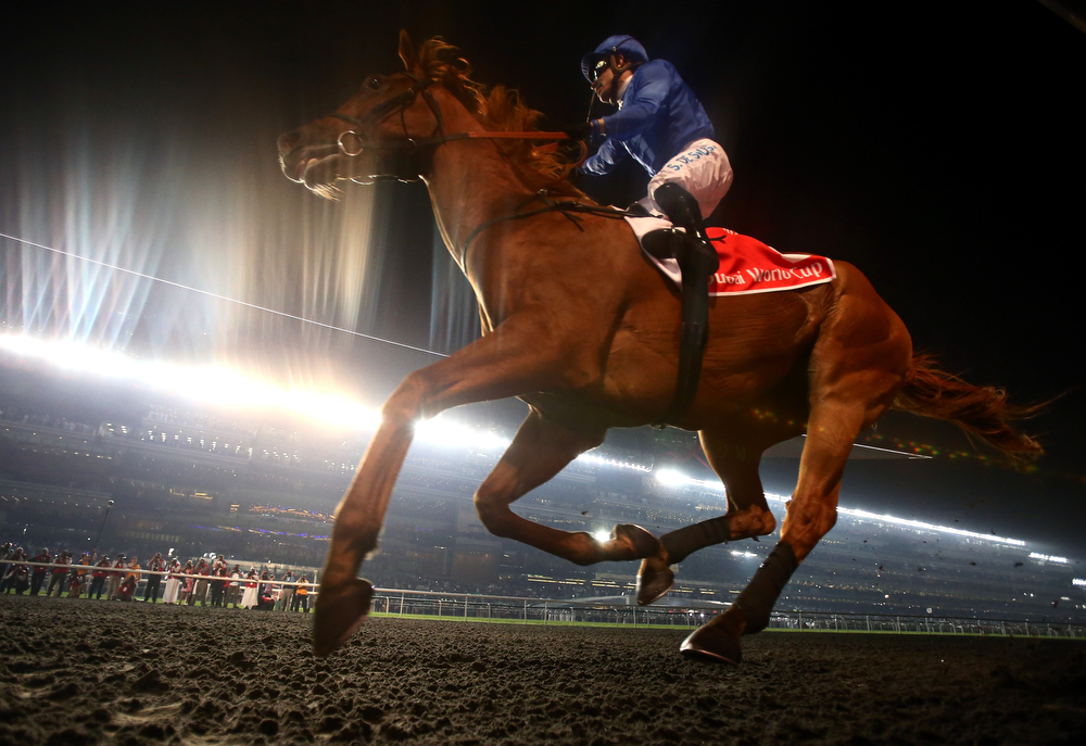 . African Story ridden by Silvestre De Sousa wins the Dubai World Cup at the Meydan Racecourse on March 29, 2014 in Dubai, United Arab Emirates.  (Photo by Warren Little/Getty Images)