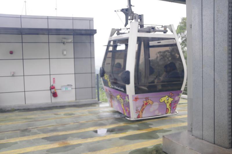 20110123_TaipeiDay2_0036.JPG