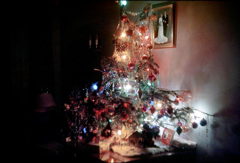 christmas tree on floor 2.jpg