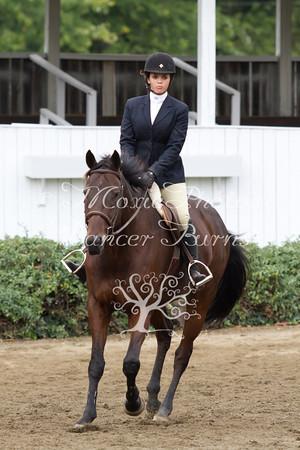 SC/B/V Horse Pleasure Junior