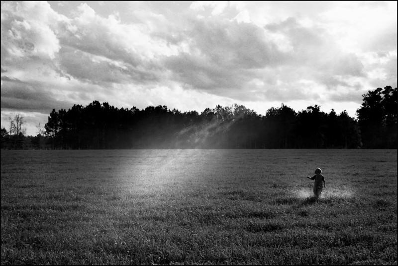A Boy in a field kicking up dust