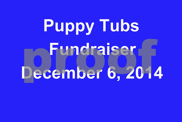 Puppy Tubs Picture Day 2014