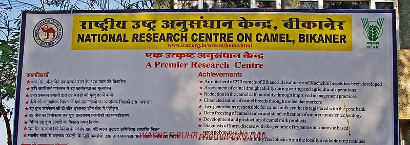 INDIA2010-0206A-290A.jpg