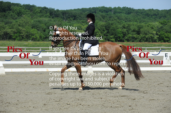 PVDA Spring Dressage show May 2012