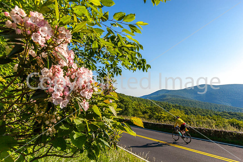 Blue Ridge Parkway Bike Ride - ACA - Day 7