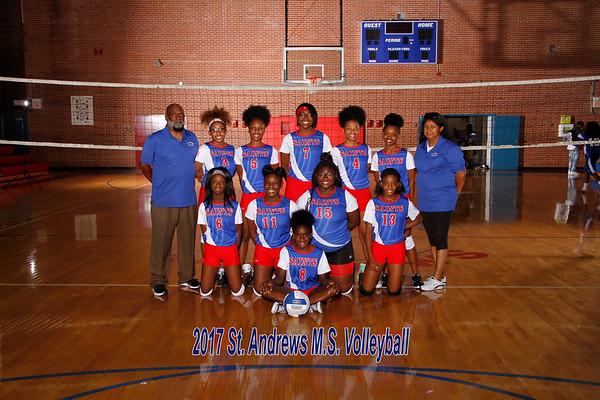 2017 Volleyball