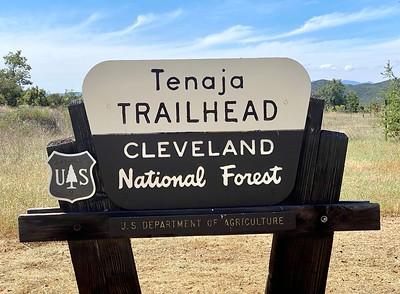 Tenaja Canyon, May 2020