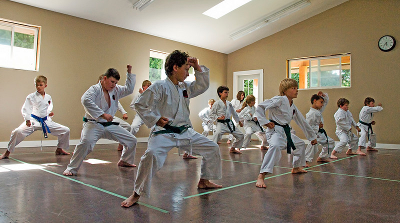 Nic(martial art)20100619A-6902A.jpg
