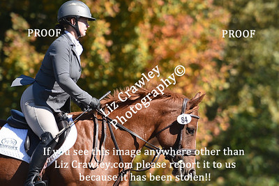 """10.17.2020 TRYON RIDING AND HUNT CLUB """"MORRIS THE HORSE TRIALS""""    PLEASE CUT AND PASTE THIS LINK INTO YOUR BROWSER IF YOU WOULD LIKE TO ORDER DIGITAL PHOTOS: www.lizcrawleyphotography.com/eventing-ordering"""
