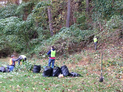 10.22.2016 Watershed Cleanup and Invasive Kudzu Removal in Daniels Section of Patapsco Valley State Park