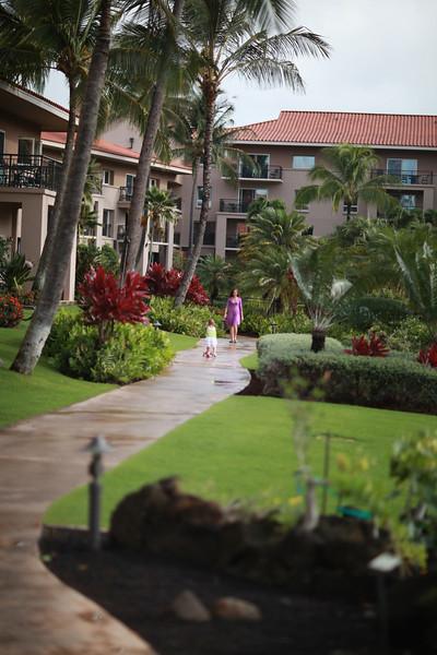 Kauai_D4_AM 024.jpg
