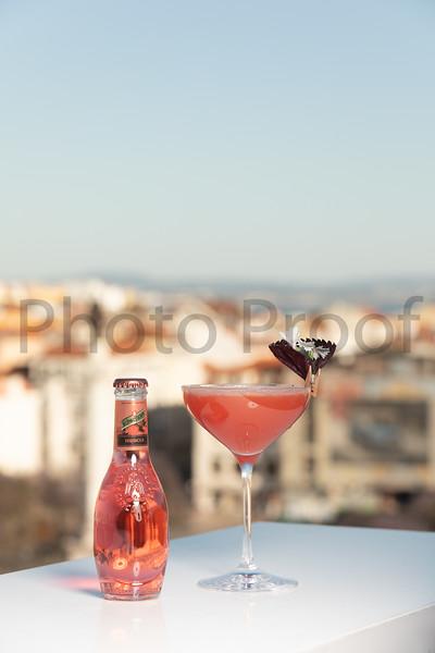 BIRDSONG Schweppes Cocktails 208.jpg