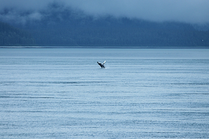 Alaska A700I_156b.jpg