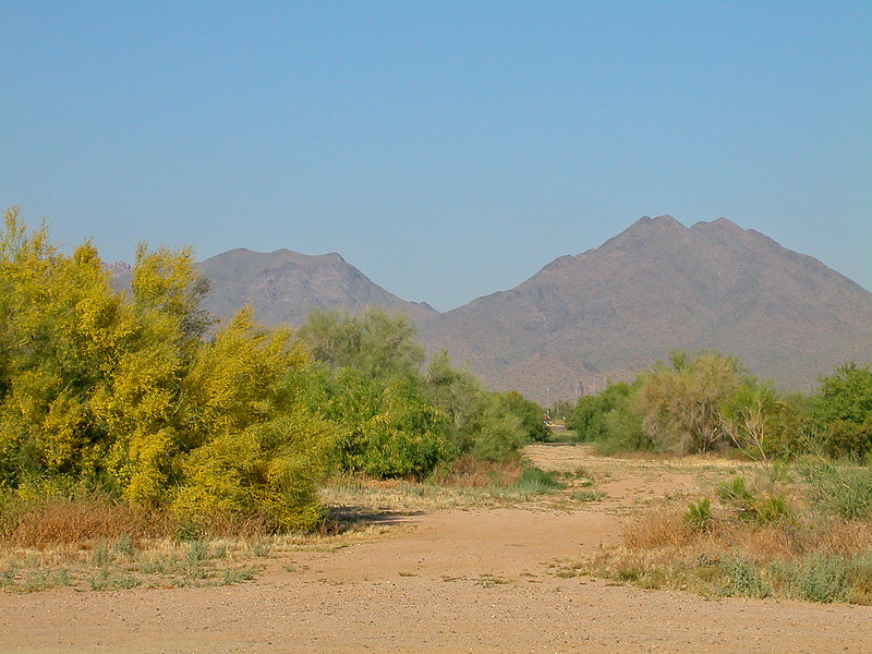 Scottsdale Mountain view.jpg