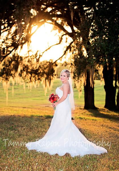 Kelli~Bridal Portraits 2013