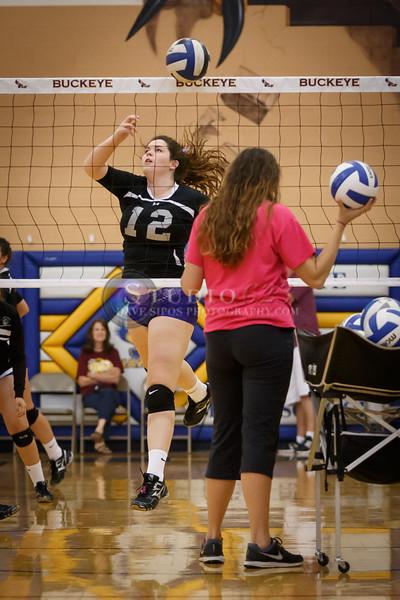 2014-10/18:  Buckeye Union High School Tournament