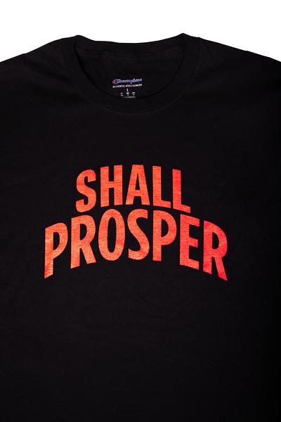 Shall Prosper Black T-shirt 3.jpg