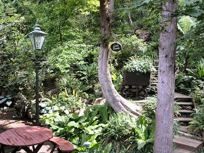 North Van Garden - 2005