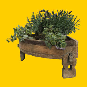 Corner Chakki Table Planter