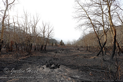 Fern Lake Fire Aftermath 12-15-2012